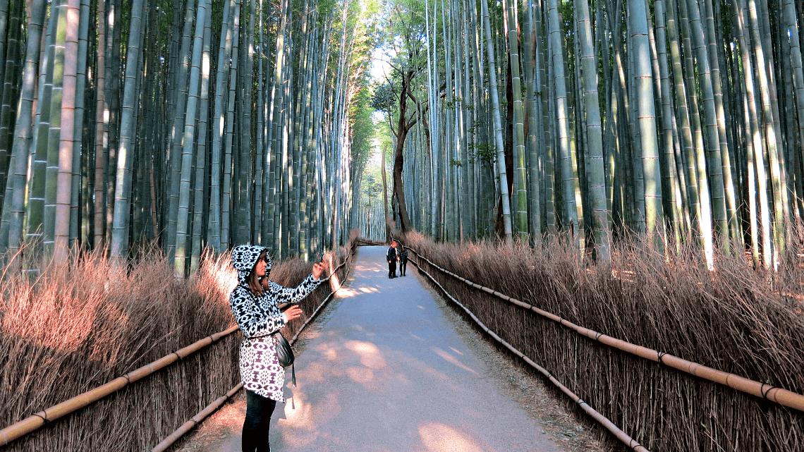 Our featured traveler, Amanda, taking photos in Arashiyama's bamboo grove in Kyoto, Japan