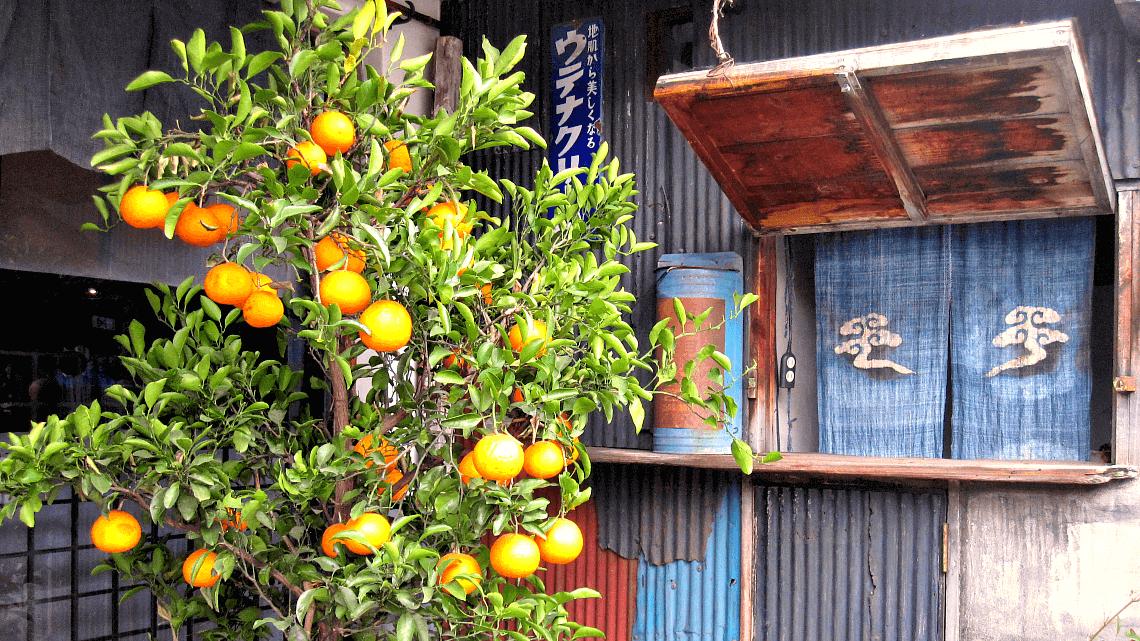 Street scenes in Daikanyama, Tokyo, Japan