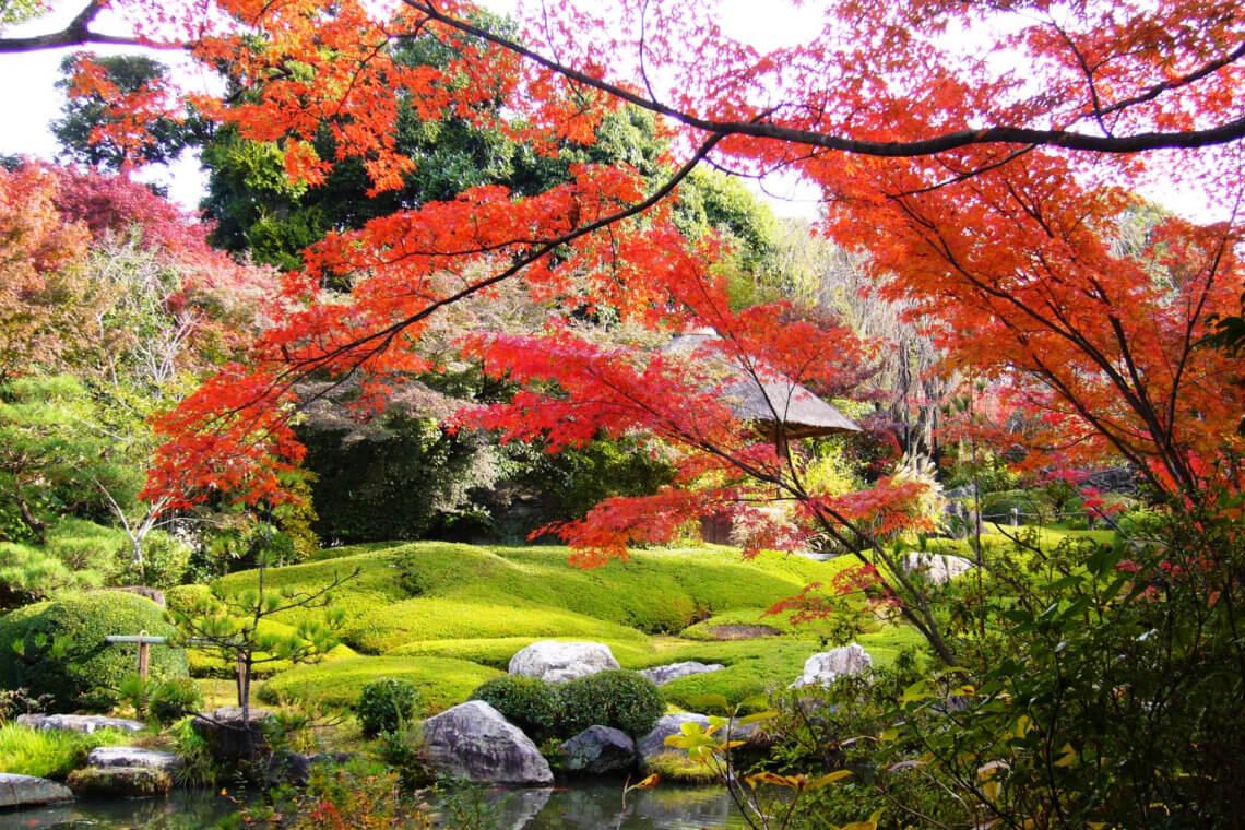 Yoko-en garden at Taizo-in temple in Kyoto